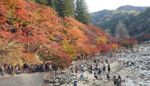 【愛知の見所紹介】秋を語るには外せない愛知の紅葉スポット~香嵐渓編~